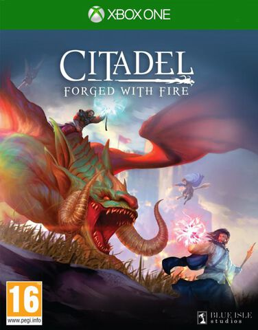 Citadel Forged With Fire