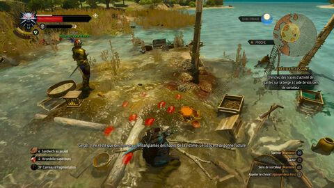 DLC - The Witcher III : Blood and Wine - PS4
