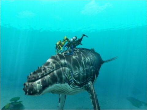 Endless Ocean 2, Aventuriers Des Fonds Marins