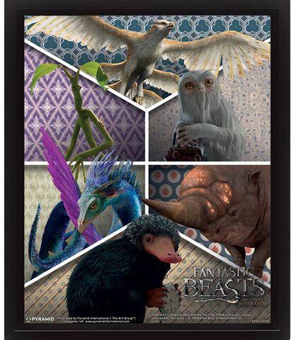 Cadre 3D - Les Animaux Fantastiques - Créatures