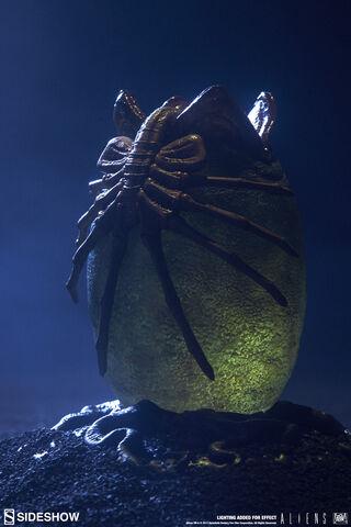Statuette Sideshow - Aliens - Alien Egg