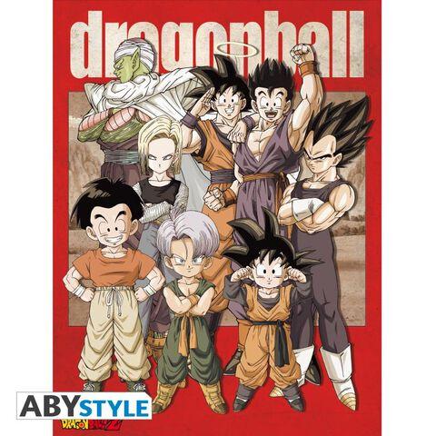 Toile - Dragon Ball - Groupe (30x40)