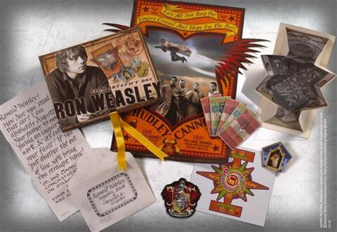 Boîte d'artefacts - Harry Potter - Ron Weasley