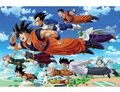 Poster - Dragon Ball Super - Groupe Goku (91.5 X 61 Cm)