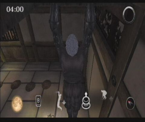 Tenchu 4, Shadow Assassins
