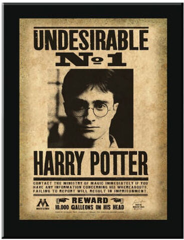 "Plaque - Harry Potter - ""undesirable N°1"" Harry Potter"