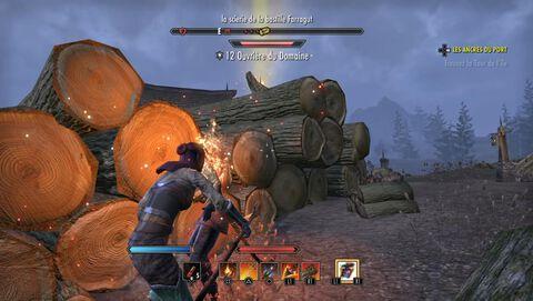 The Elder Scrolls Online : Tamriel Unlimited