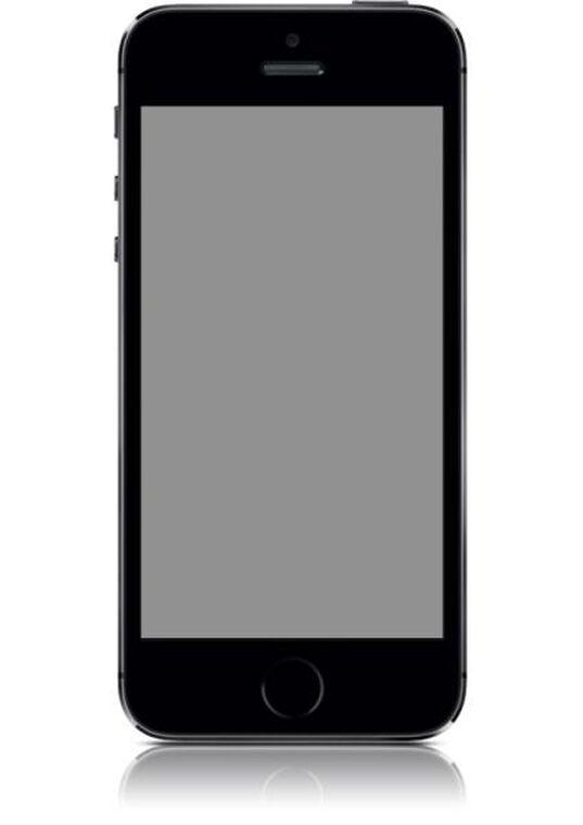 iPhone 5S 16Go Gris Sidéral - Désimlocké - Très bon état
