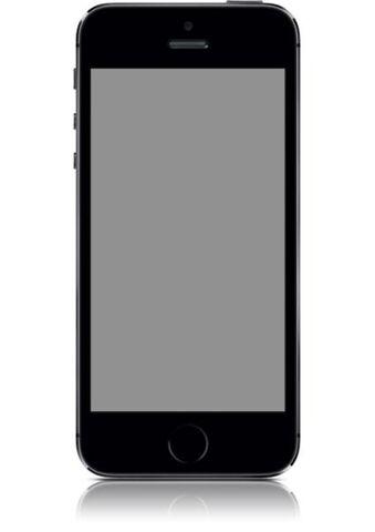 iPhone 5S 16Go Gris Sidéral - Opérateur Orange