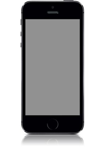 Iphone 5s 64gb Désimlocké Gris Sideral / Tres Bon Etat