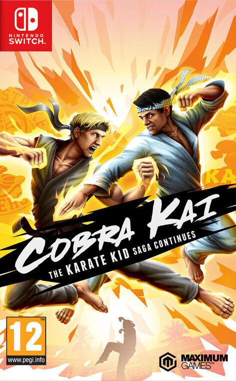 Cobra Kai The Karate Kid Continues
