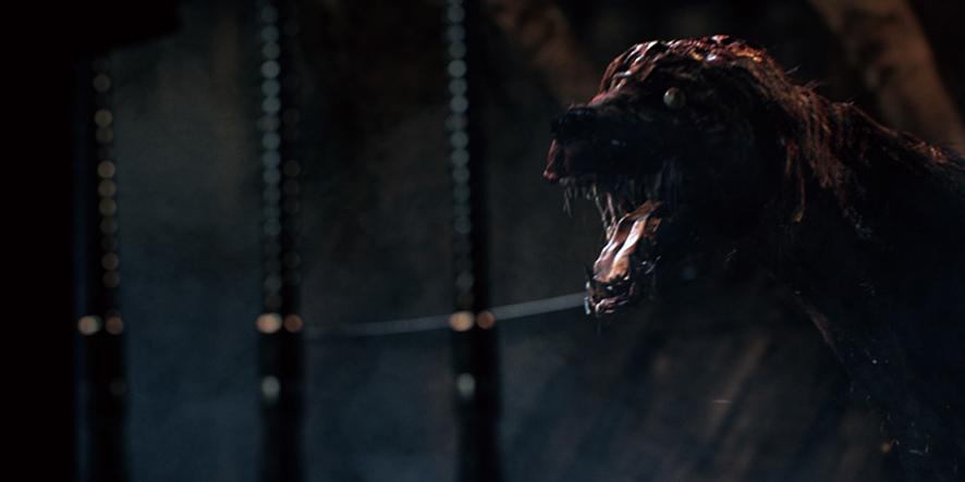 Un chien dans Bloodborne